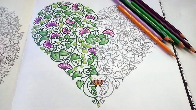 fotos jardim secreto:Desenhos Livro Jardim Secreto